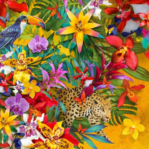 Celebrate the colour of Columbia at Kew Orchid Festival