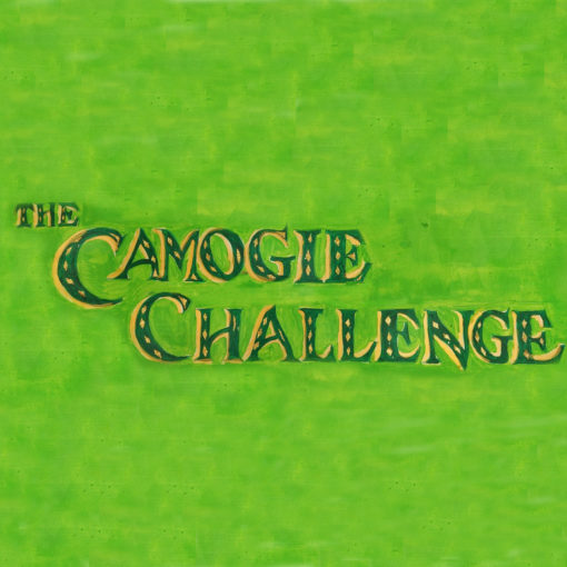 The Camogie Challenge at St Patricks Day