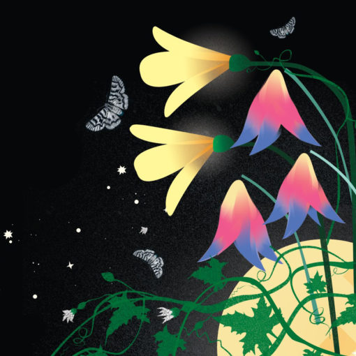 [CANCELLED] Spring Gathering