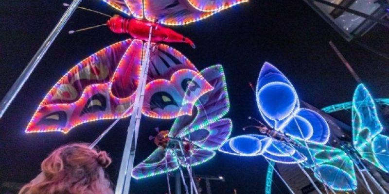 LED Butterflies
