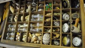 Cabinet of Curiosities Oddities 12