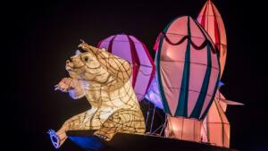 Chester Zoo Lanterns28495 preview