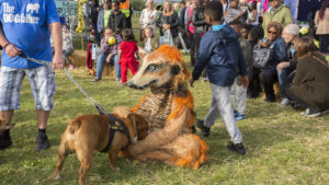 Thamesmead Festival 2017 Meerkat and Bulldog