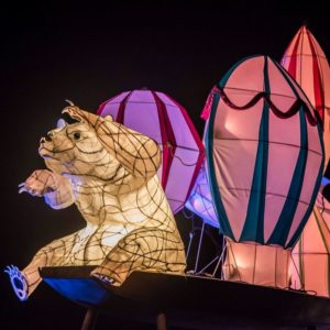 Chester Zoo Lanterns