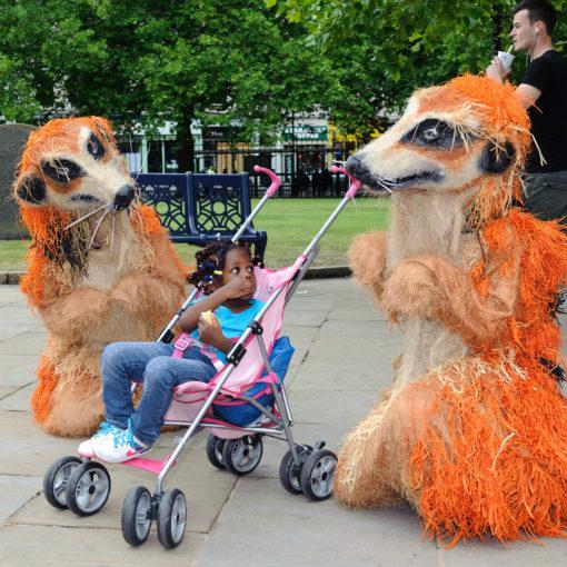 The Meerkats Menagerie 3